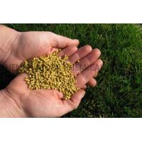 Quality Corn Gluten Meal for sale