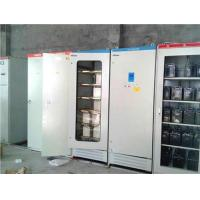 Prostar 45KW UPS Applied To Iron Ore Mining Company,Provide Power For Lighting Protection System