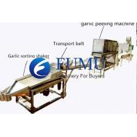Quality High quality garlic processing line for sale