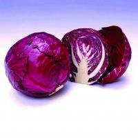 Quality Red Cabbage Color(Deodorized) for sale