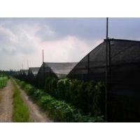 Quality insect proof net for greenhouse for sale