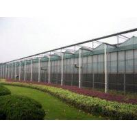 Quality Tempered Glass Greenhouse for sale