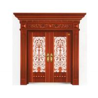 Steel door series AY-8009