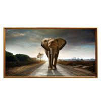 Quality Modern Art Elephant Wall Hanging Picture Canvas Print Framed Painting for sale